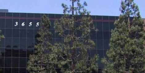B&PLUS USA – California Office
